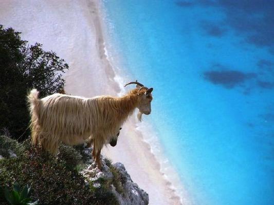 Holiday house Villa Spiros-Anemos, 4 Jahreszeiten luxus villen - Sued Kreta (383351), Plakias, Crete South Coast, Crete, Greece, picture 22