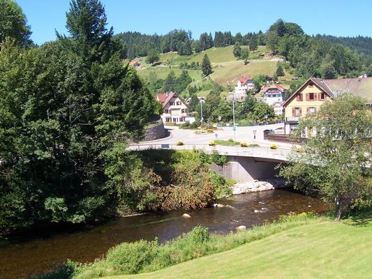 Ferienwohnung Appartementhaus Wiesengrund - Fewo 1 (402585), Baiersbronn, Schwarzwald, Baden-Württemberg, Deutschland, Bild 9