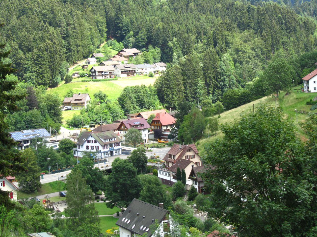 Ferienwohnung Appartementhaus Wiesengrund -Fewo2 (402591), Baiersbronn, Schwarzwald, Baden-Württemberg, Deutschland, Bild 9