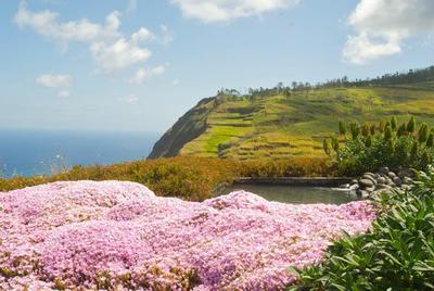 Ferienhaus Traumhafte Villa inmitten paradiesischen Natur (418921), Ponta do Pargo, , Madeira, Portugal, Bild 8