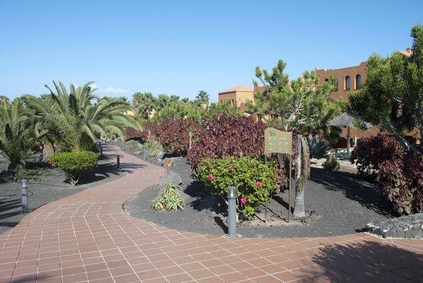 Ferienwohnung Apartments RO2 Corralejo (I) (428506), Corralejo, Fuerteventura, Kanarische Inseln, Spanien, Bild 15