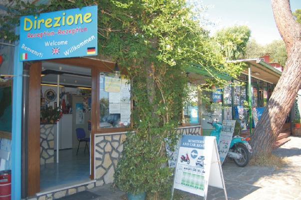 Ferienwohnung Bungalow  Standard 2 Plätze (430221), Massa Lubrense, Amalfiküste, Kampanien, Italien, Bild 13