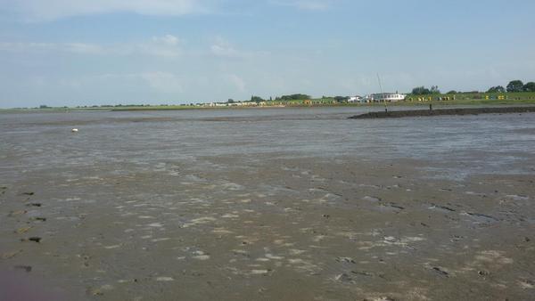Wattenmeer - Das Wasser kommt langsam zurück