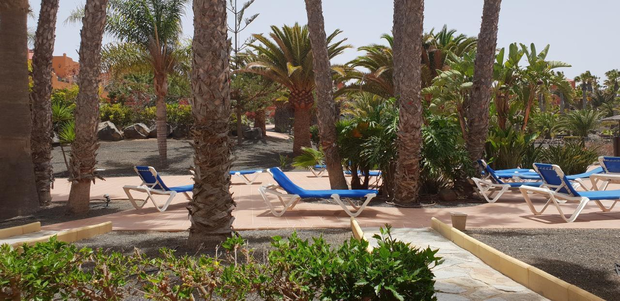 Ferienwohnung Apartments RO Corralejo (II) (431498), Corralejo, Fuerteventura, Kanarische Inseln, Spanien, Bild 12