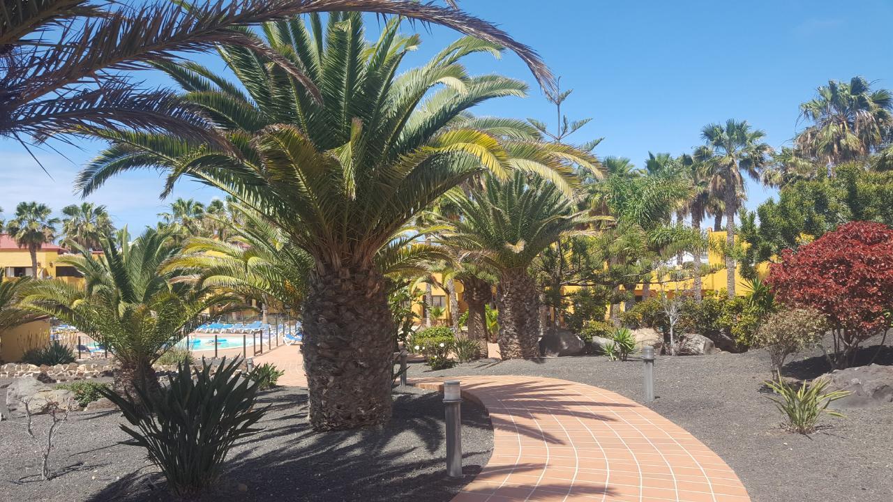 Ferienwohnung Apartments RO Corralejo (II) (431498), Corralejo, Fuerteventura, Kanarische Inseln, Spanien, Bild 11