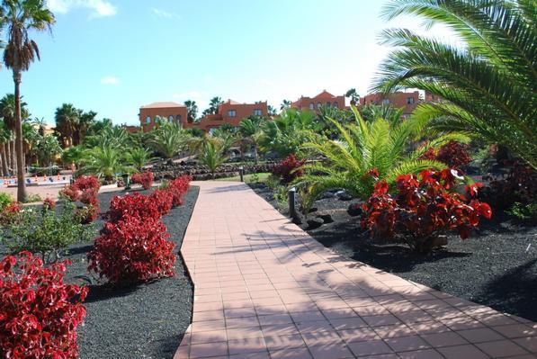 Ferienwohnung Apartments RO Corralejo (II) (431498), Corralejo, Fuerteventura, Kanarische Inseln, Spanien, Bild 5