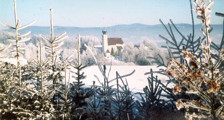 Ferienwohnung Ferienwohnung (441811), Saldenburg, Bayerischer Wald, Bayern, Deutschland, Bild 13