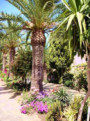 Ferienwohnung Haus Tonnara, Meer von Sizilien, in einem schönen Park, Schwimmbad, mit Blick auf die Lipa (443896), Oliveri, Messina, Sizilien, Italien, Bild 11