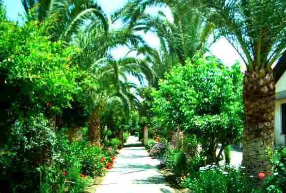 Ferienwohnung Haus Tonnara, Meer von Sizilien, in einem schönen Park, Schwimmbad, mit Blick auf die Lipa (443896), Oliveri, Messina, Sizilien, Italien, Bild 15