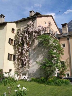 Ferienhaus Antikes, renoviertes Haus (443901), Borgonovo, Bergell, Graubünden, Schweiz, Bild 11
