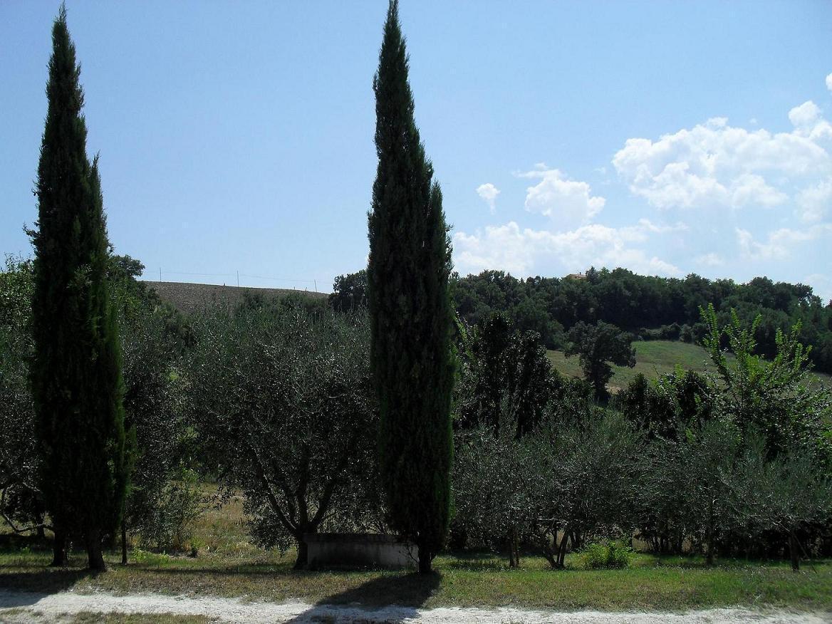 Ferienhaus La Mia Piccola Casetta (444725), Arcevia, Ancona, Marken, Italien, Bild 25