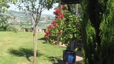 Ferienhaus La Mia Piccola Casetta (444725), Arcevia, Ancona, Marken, Italien, Bild 14