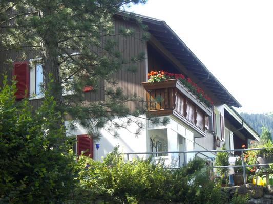 Appartement de vacances Bijou (446000), Alt St. Johann, Toggenbourg, Suisse Orientale, Suisse, image 4
