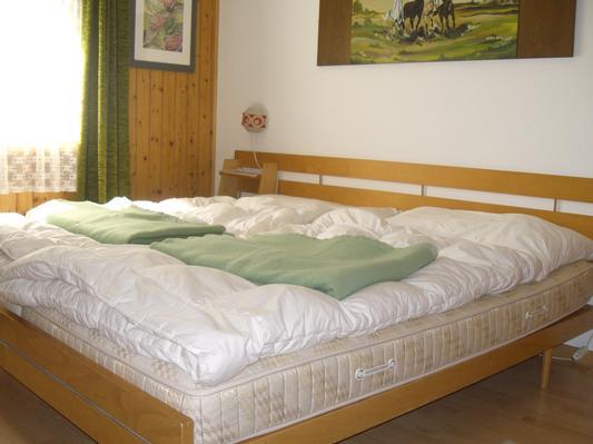 Appartement de vacances Bijou (446000), Alt St. Johann, Toggenbourg, Suisse Orientale, Suisse, image 14