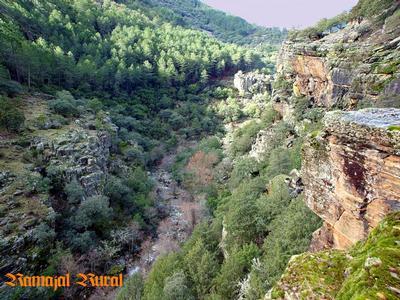 Ferienwohnung Ramajalrural 1 (456674), Horcajo, Caceres, Extremadura, Spanien, Bild 5