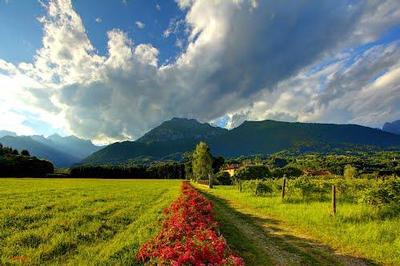 Ferienhaus Martina - Parco Dolomiti Bellunesi (460395), Feltre, Dolomiten, Trentino-Südtirol, Italien, Bild 35