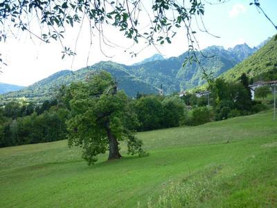 Ferienhaus Martina - Parco Dolomiti Bellunesi (460395), Feltre, Dolomiten, Trentino-Südtirol, Italien, Bild 17