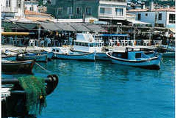 Ferienhaus Erni 1 (464478), Dikili, , Ägäisregion, Türkei, Bild 15