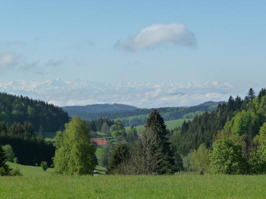 Ferienwohnung Gästehaus Dummer - Ferienwohnung Wehratal  5 Sterne (468257), Herrischried, Schwarzwald, Baden-Württemberg, Deutschland, Bild 23
