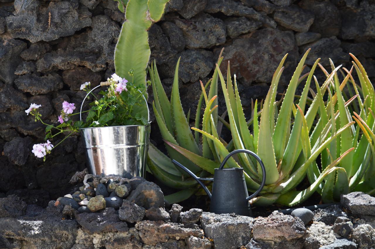 Ferienwohnung Casa Rural Finca Creativa - Casita Aloe (468365), Uga, Lanzarote, Kanarische Inseln, Spanien, Bild 12