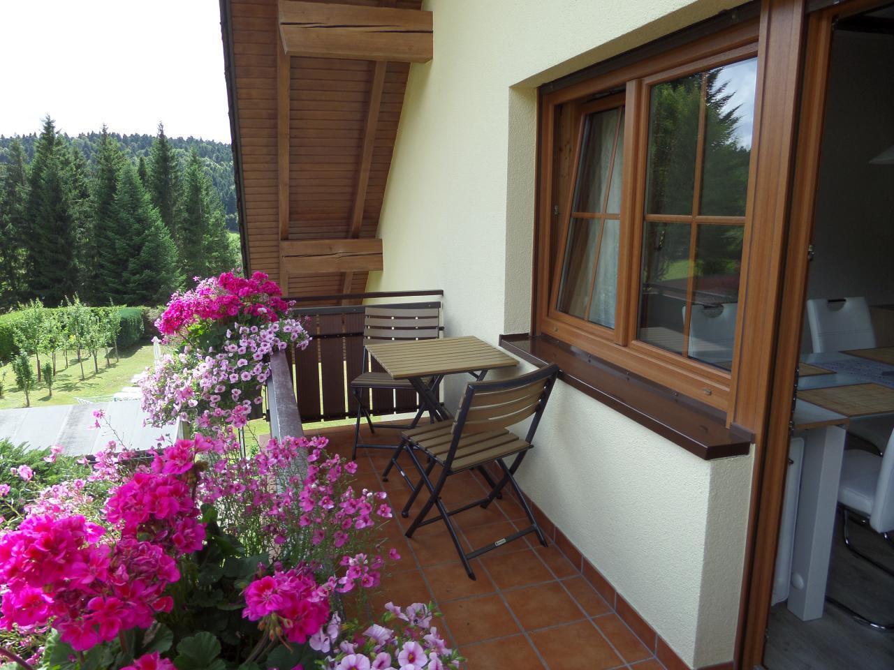 Ferienwohnung Gästehaus Dummer -Ferienwohnung Hotzenwald (468527), Herrischried, Schwarzwald, Baden-Württemberg, Deutschland, Bild 16