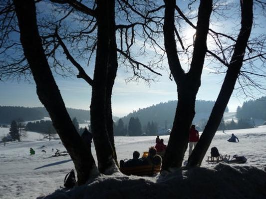 Ferienwohnung Gästehaus Dummer -Ferienwohnung Hotzenwald (468527), Herrischried, Schwarzwald, Baden-Württemberg, Deutschland, Bild 29