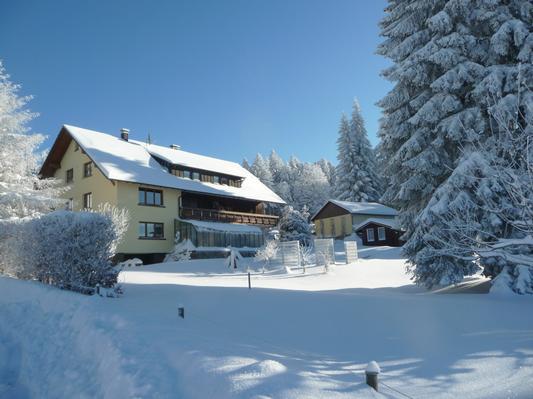 Ferienwohnung Gästehaus Dummer -Ferienwohnung Hotzenwald (468527), Herrischried, Schwarzwald, Baden-Württemberg, Deutschland, Bild 28