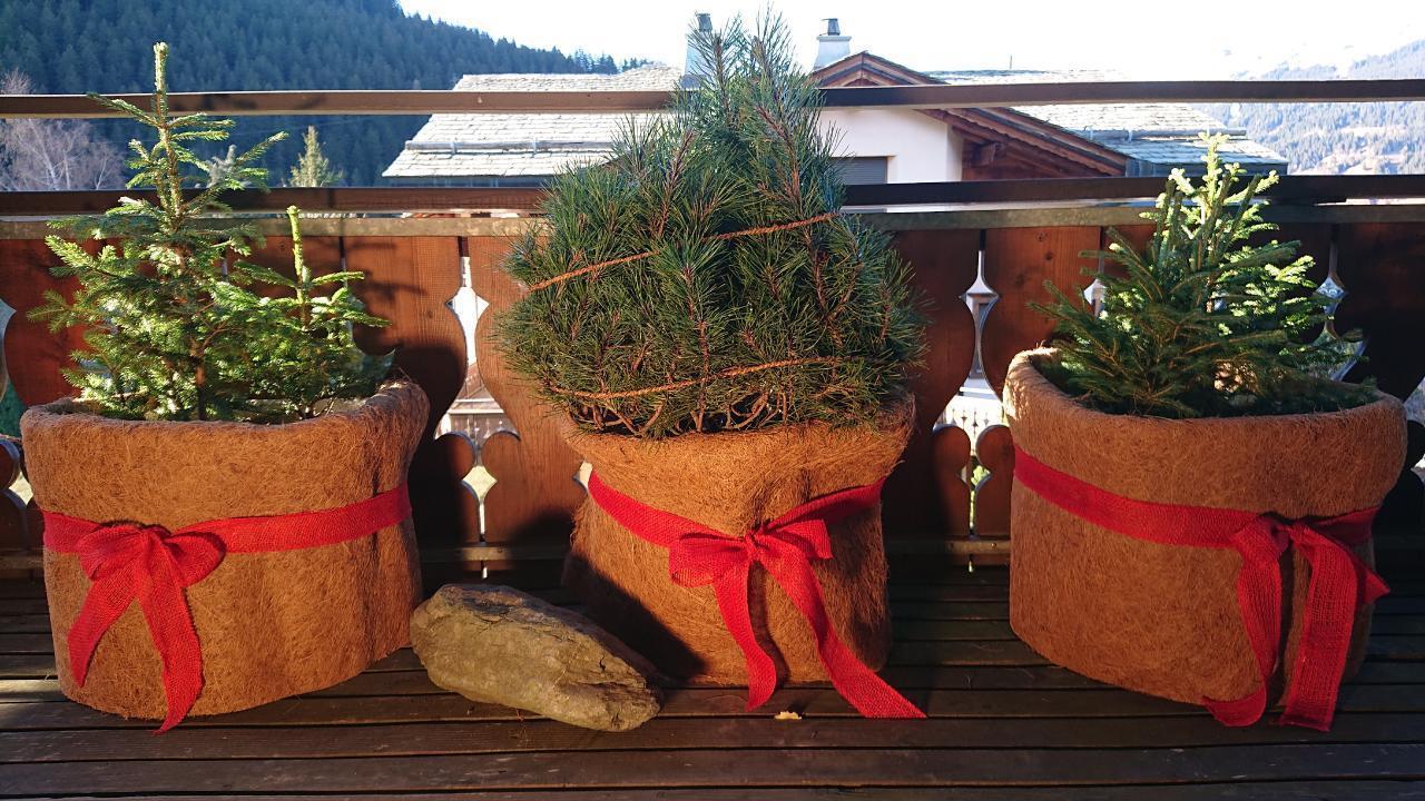 Appartement de vacances Luxuriöses Penthouse in Chalet /Top Lage (470460), Klosters, Davos - Klosters - Prättigau, Grisons, Suisse, image 21