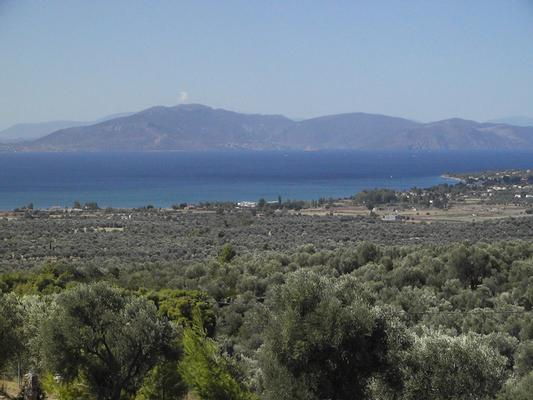 Holiday house PANORAMA VIEW EVIA - Sleeps up to 6 people - Rentable on a weekly basis (477064), Politika, , Euboea, Greece, picture 15