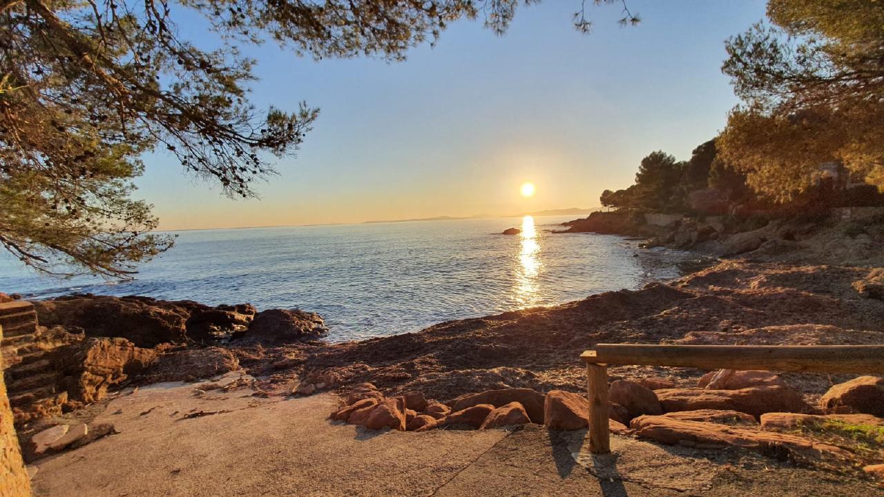 Ferienwohnung in Pinienheide (479248), Saint Raphaël, Côte d'Azur, Provence - Alpen - Côte d'Azur, Frankreich, Bild 12