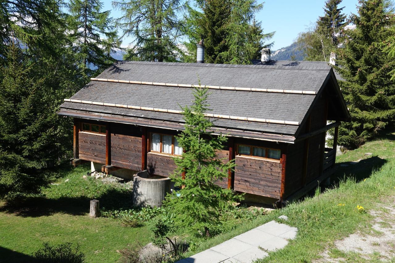 Ferienhaus Haus Pfahl (480620), Bellwald, Aletsch - Goms, Wallis, Schweiz, Bild 4