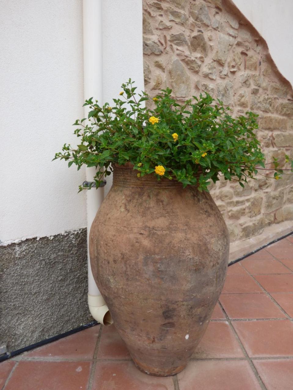 Ferienhaus Villa Maria ein schönes Landhaus in einer ruhigen und sonnige lage mit Blick auf den Eolie (482652), Patti, Messina, Sizilien, Italien, Bild 9