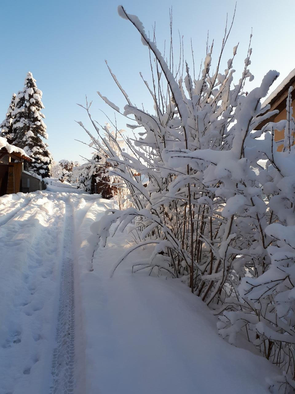Ferienwohnung Haus Rigiblick (482934), Adligenswil, Luzern, Zentralschweiz, Schweiz, Bild 21