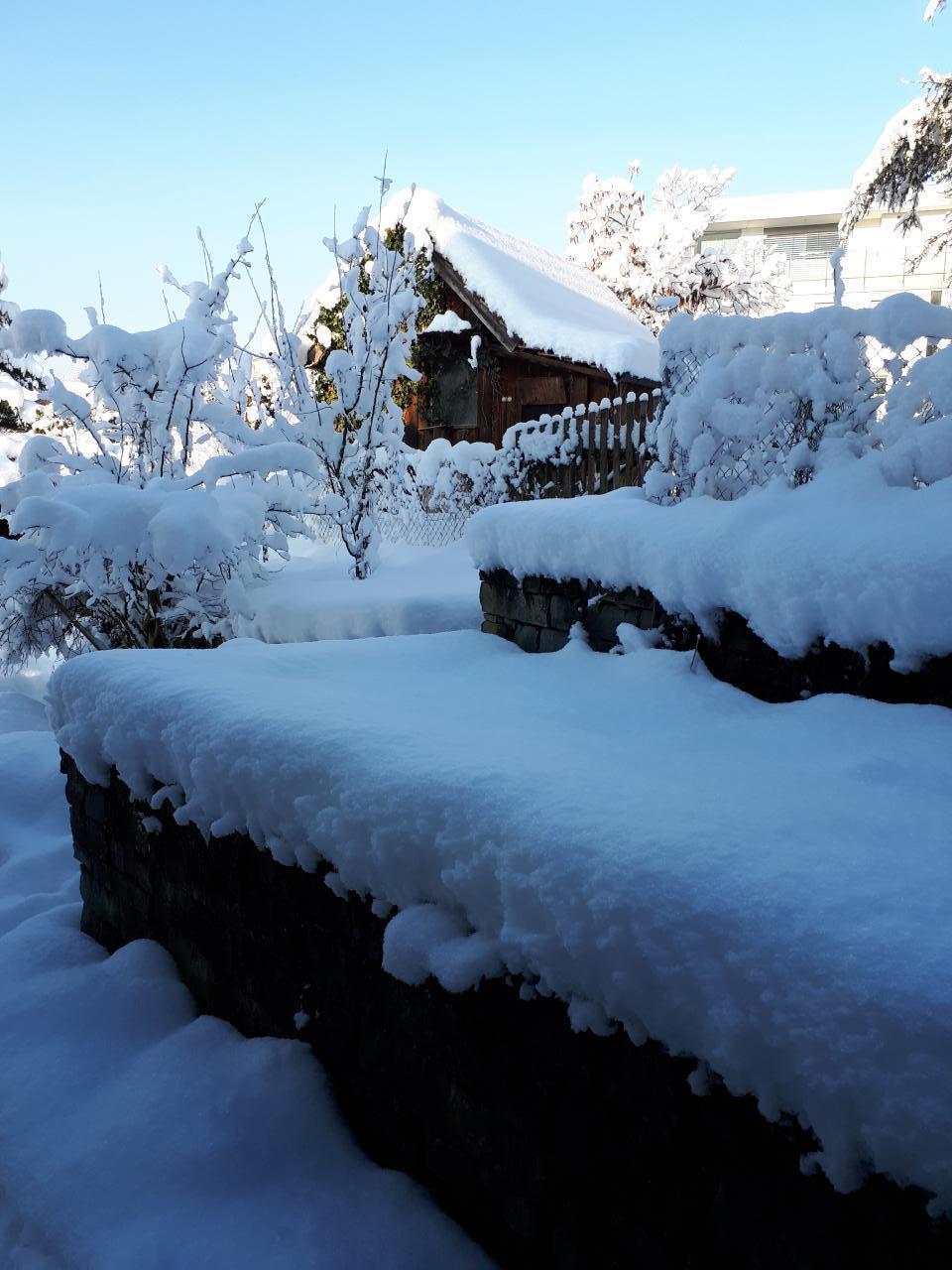 Ferienwohnung Haus Rigiblick (482934), Adligenswil, Luzern, Zentralschweiz, Schweiz, Bild 19
