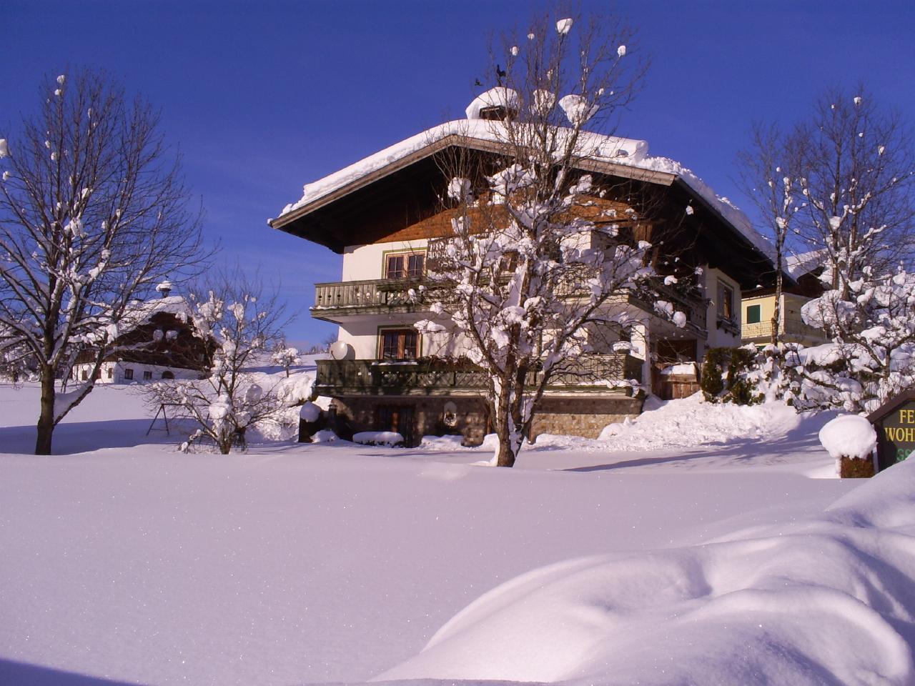 Appartement de vacances Ferienwohnungen Gsenger (484802), Abtenau, Tennengau, Salzbourg, Autriche, image 2