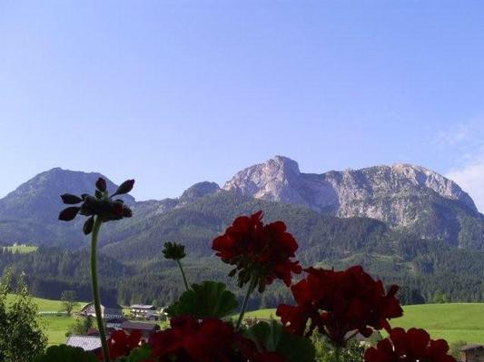 Appartement de vacances Ferienwohnungen Gsenger (484802), Abtenau, Tennengau, Salzbourg, Autriche, image 17
