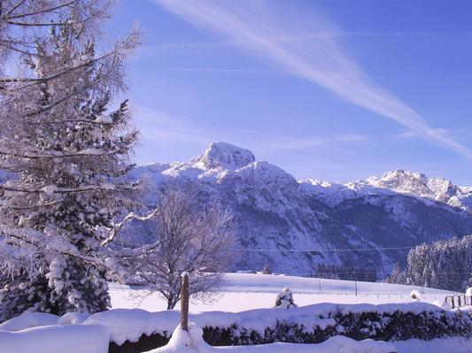 Appartement de vacances Ferienwohnungen Gsenger (484802), Abtenau, Tennengau, Salzbourg, Autriche, image 21