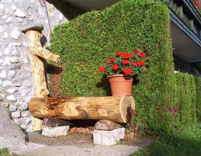Appartement de vacances Ferienwohnungen Gsenger (484802), Abtenau, Tennengau, Salzbourg, Autriche, image 16