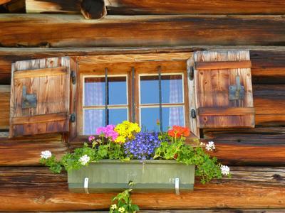 Appartement de vacances Ferienwohnungen Gsenger (484802), Abtenau, Tennengau, Salzbourg, Autriche, image 30