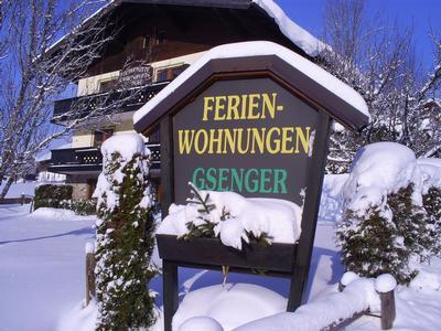 Appartement de vacances Ferienwohnungen Gsenger (484802), Abtenau, Tennengau, Salzbourg, Autriche, image 23