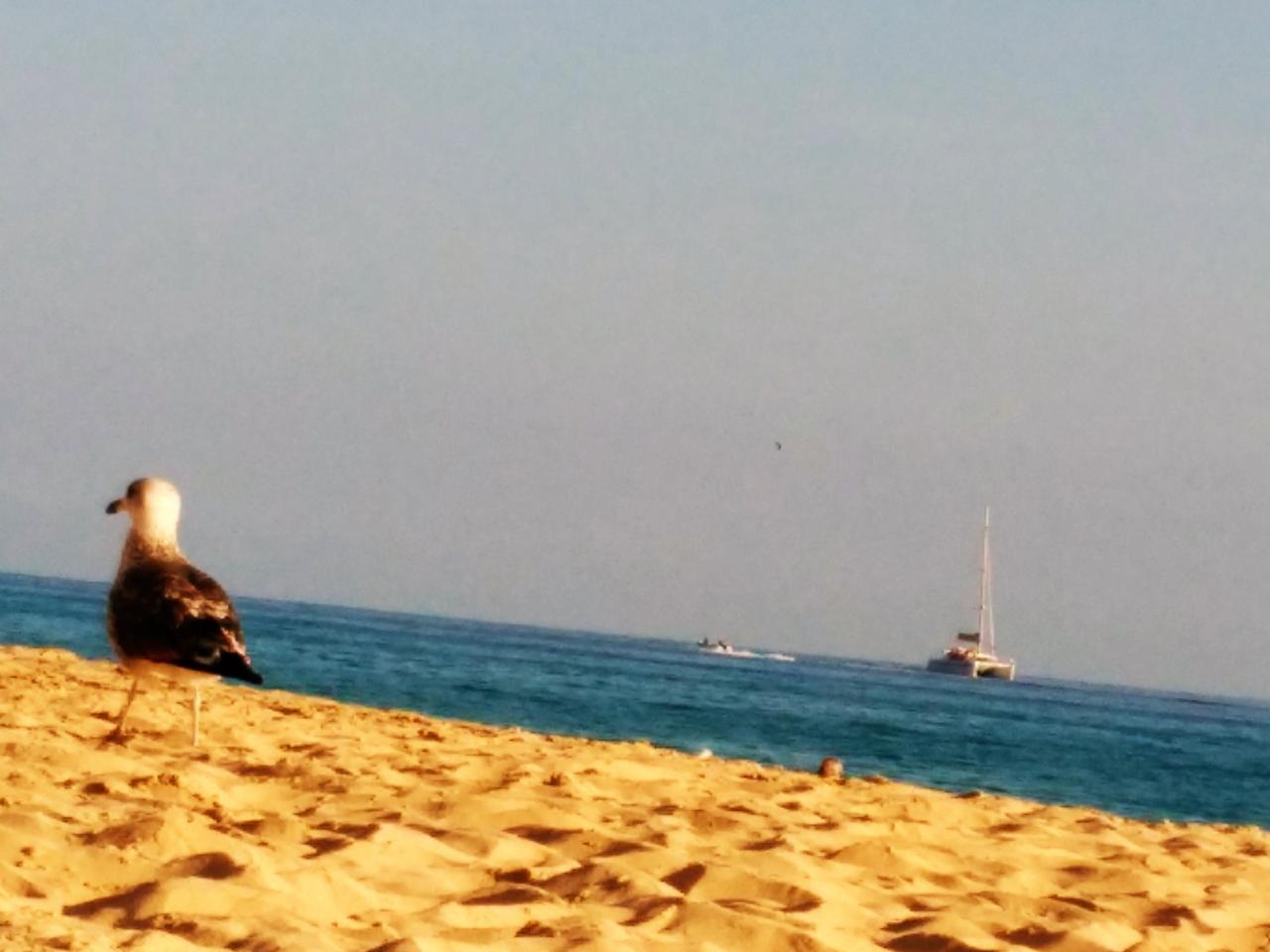 Ferienwohnung Penthouse / Apt. in der besten Gegend von Costa Calma, mit Blick auf eine große Terrasse a (487472), Costa Calma, Fuerteventura, Kanarische Inseln, Spanien, Bild 22