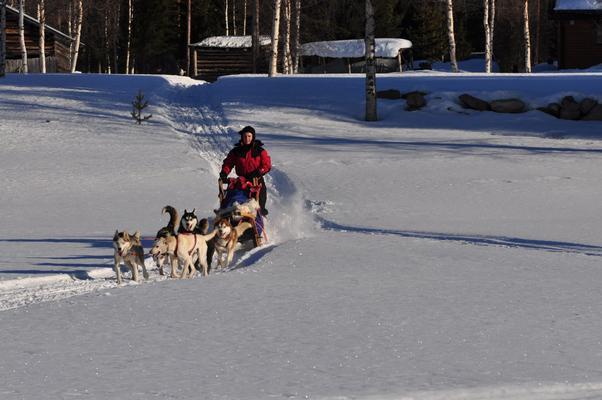 Ferienhaus in Lappland am Wildfluss (493058), Sorsele, Västerbottens län, Nordschweden, Schweden, Bild 13