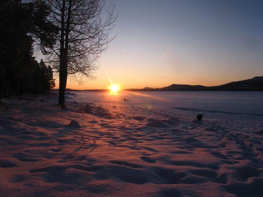 Ferienhaus in Lappland am Wildfluss (493058), Sorsele, Västerbottens län, Nordschweden, Schweden, Bild 15