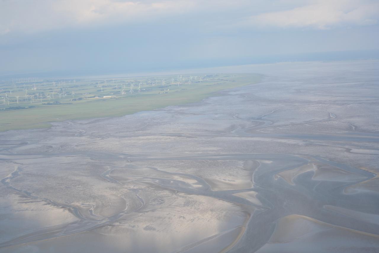Küste mit Wattenmeer und Salzwiesen