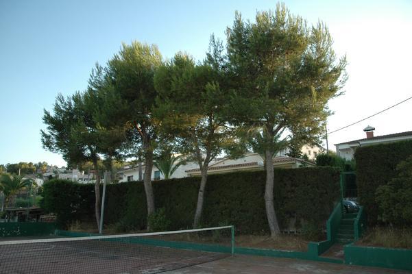 Ferienhaus Casa de Vacaciones CAL VIVES de Canyelles (495518), Canyelles, Costa del Garraf, Katalonien, Spanien, Bild 10