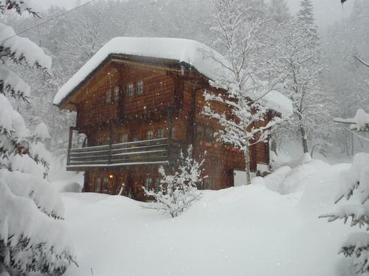 Holiday apartment am Gibelsbach (495883), Fiesch, Aletsch - Goms, Valais, Switzerland, picture 9