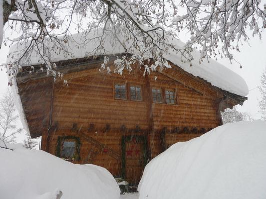 Holiday apartment am Gibelsbach (495883), Fiesch, Aletsch - Goms, Valais, Switzerland, picture 10