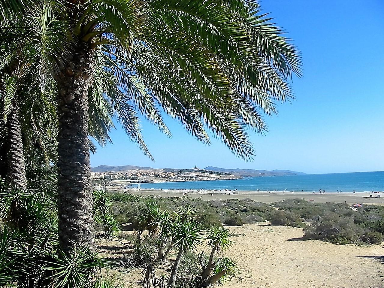 Ferienwohnung Bungalow mit Charme  nahe dem Strand und dem Meer, mit großem Terrasse 25 m. WIFI (497106), Costa Calma, Fuerteventura, Kanarische Inseln, Spanien, Bild 1