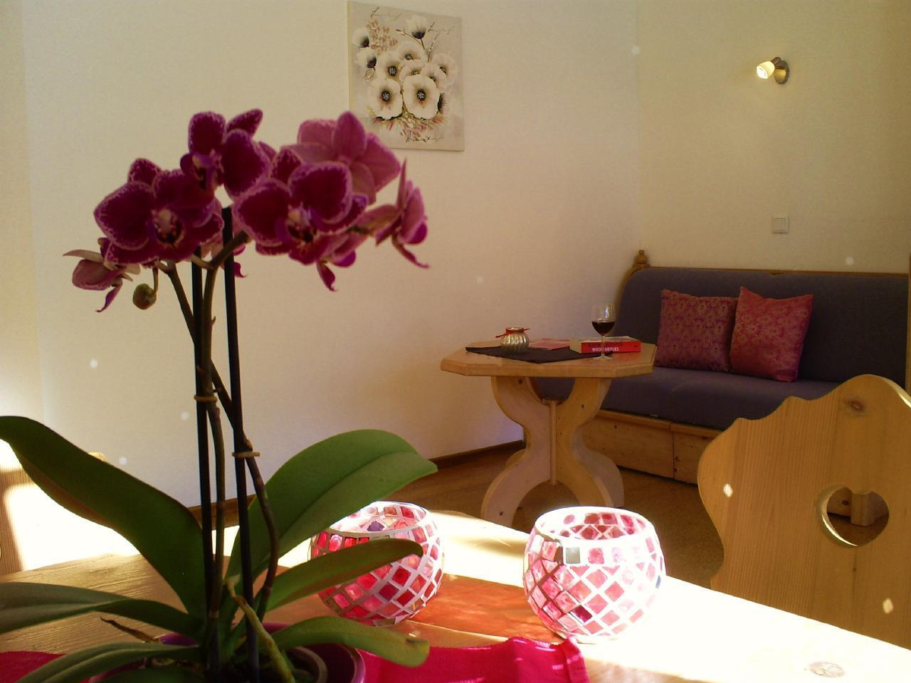 Appartement de vacances Gsenger (497883), Abtenau, Tennengau, Salzbourg, Autriche, image 4