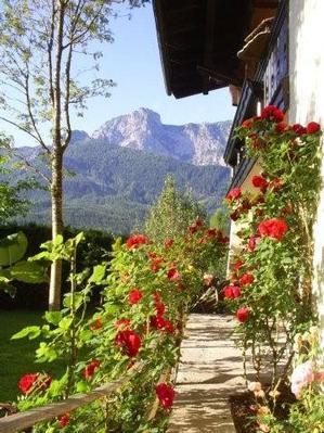 Appartement de vacances Gsenger (497883), Abtenau, Tennengau, Salzbourg, Autriche, image 15